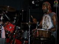 Swamp Guinee